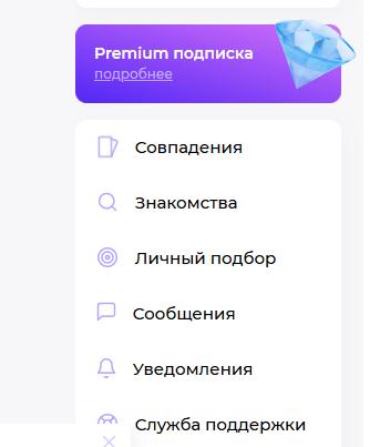 Премиум-подписка на Teamo ru